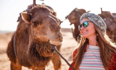 marokko-tour-kamele-1-800x533-2